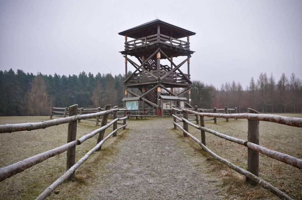 Roztocze Wieża na Białej Górze Zwierzyniec