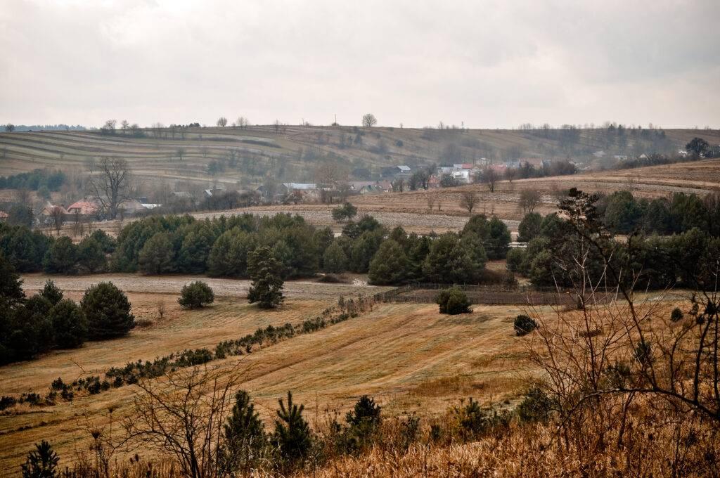 Roztocze wieś Sochy Bukowa Góra