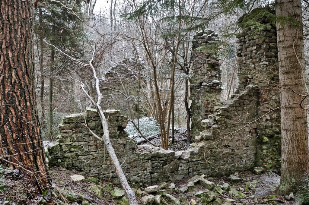 Ruiny Papierni Hamernia Rezerwat Czartowe Pole Roztocze rzeka Sopot