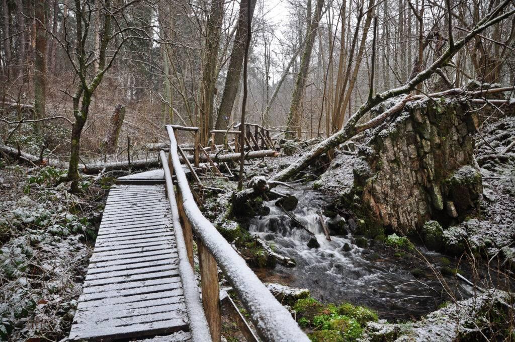 Ruiny Papierni Rezerwat Czartowe Pole Roztocze rzeka Sopot