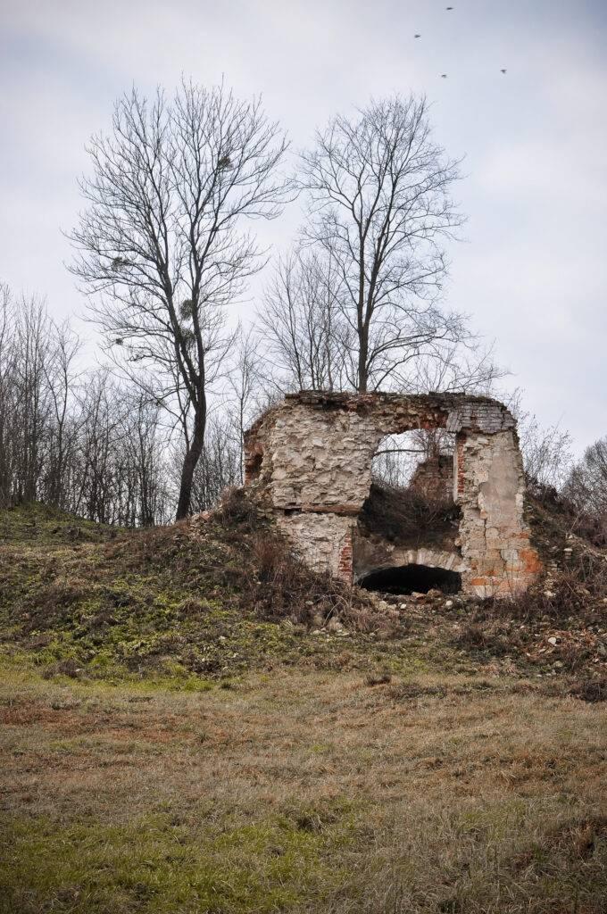 Zamek w Szczebrzeszynie Grodzisko