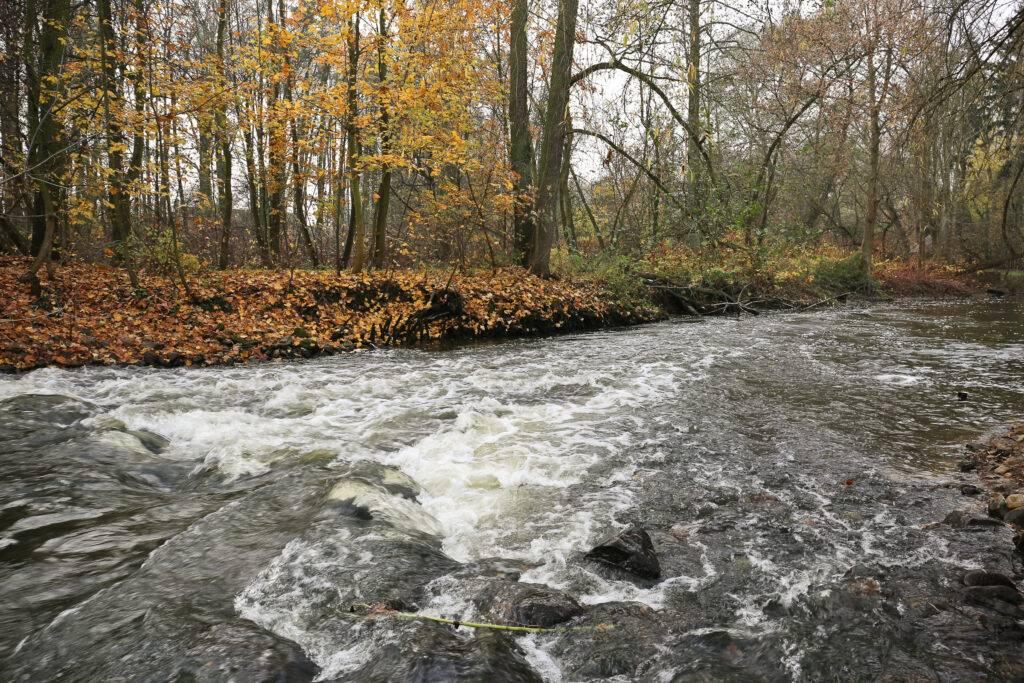 Rzeka Utrata Żelazowa Wola
