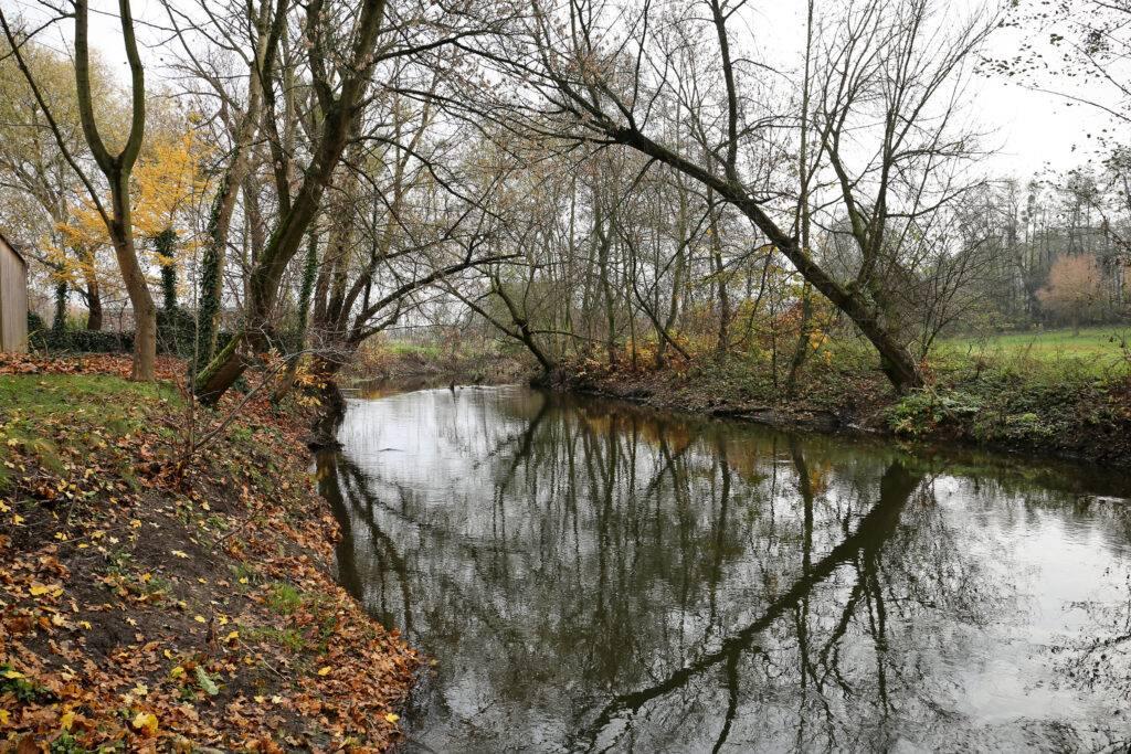 Rzeka Utrata w Żelazowej Woli