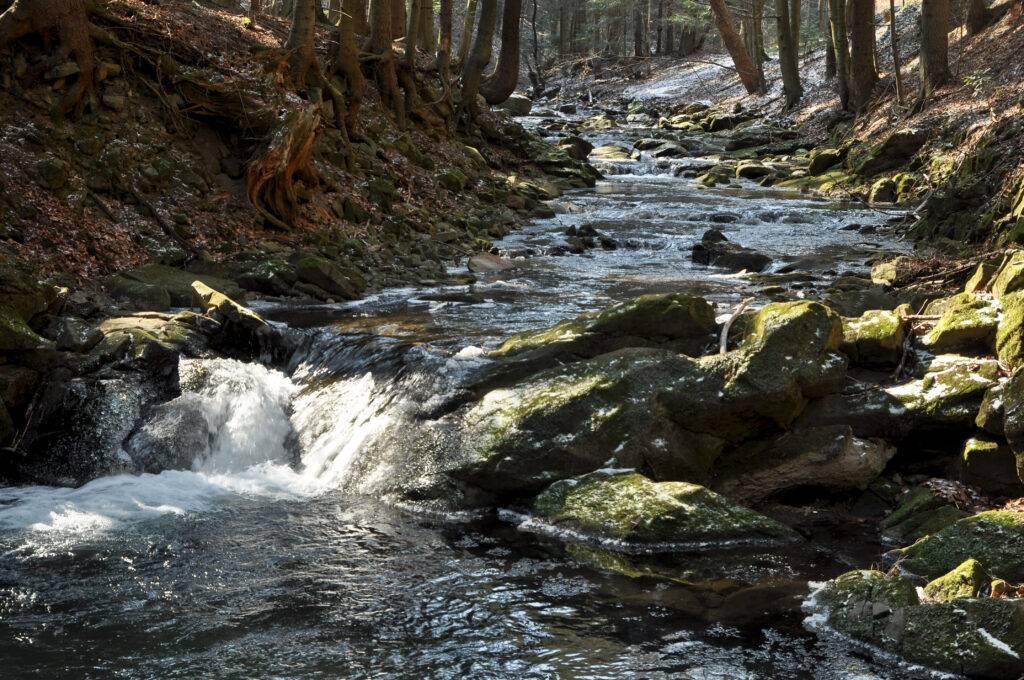 przełom rzeki Kłopotnica Folusz