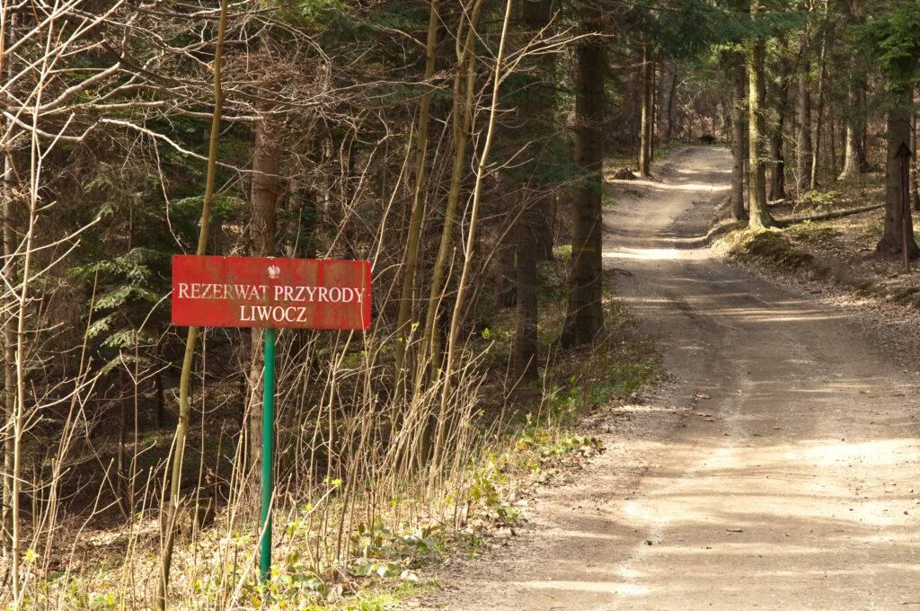 Rezerwat Przyrody Liwocz