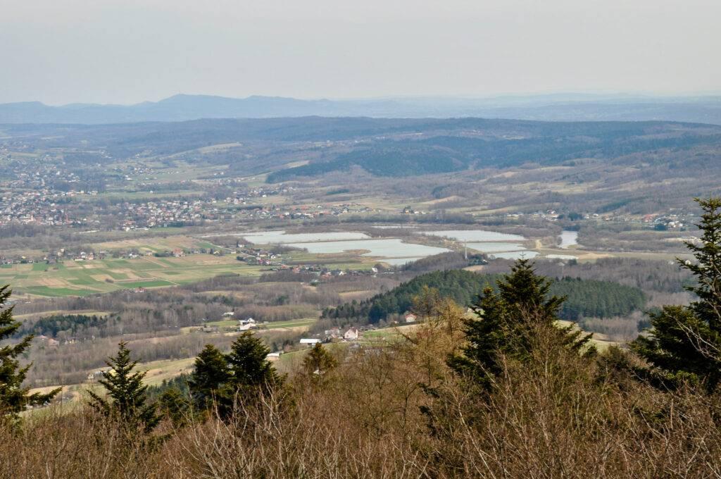 Dolina Wisłoki