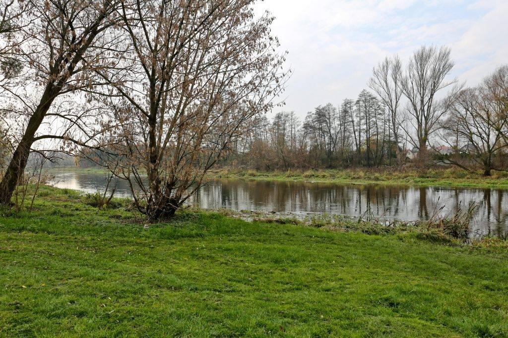 rzeka Bzura