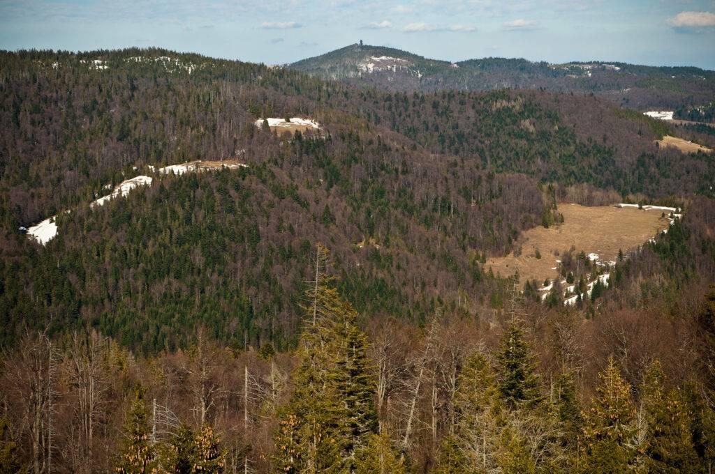 panorama Gorców z wieży na Magurkach