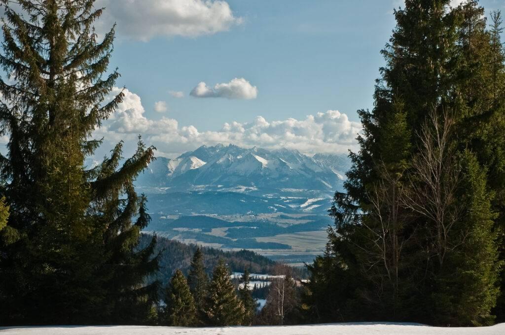 panorama Tatr z Gorców