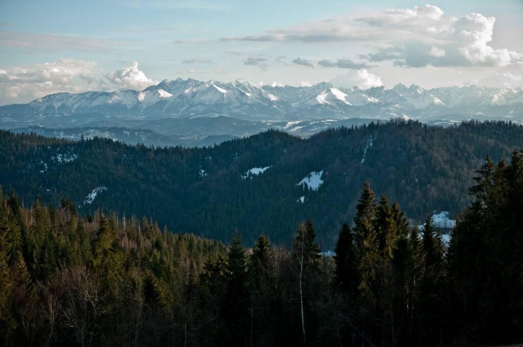 widok na tatry z Gorców