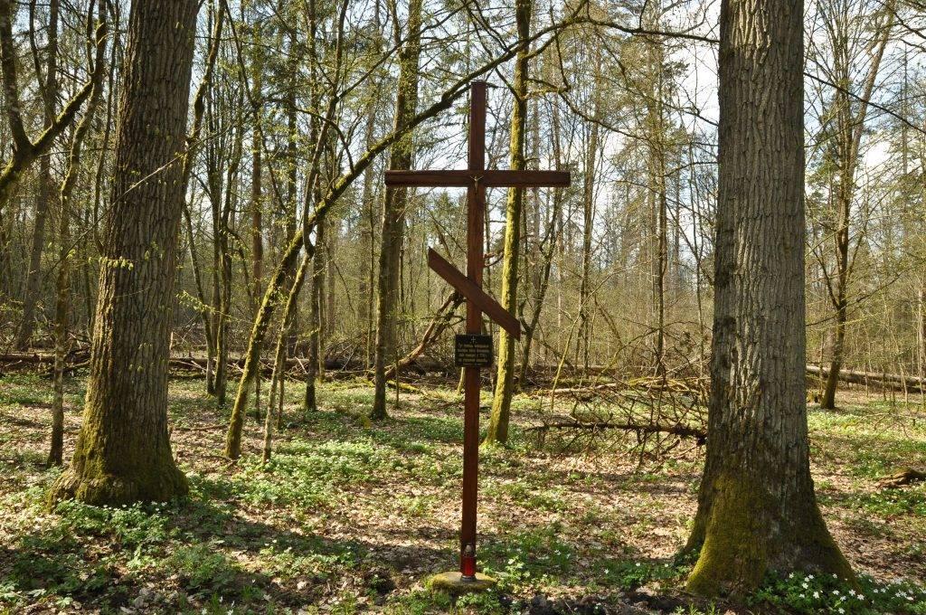 krzyż w Puszczy Białowieskiej