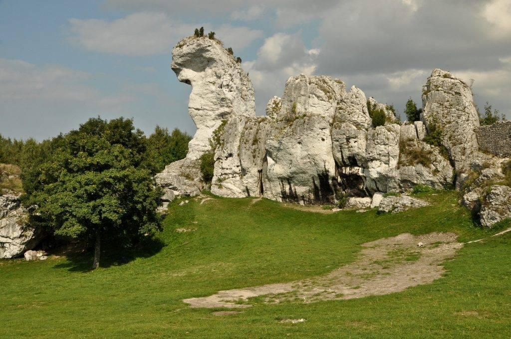zamek w Ogrodzieńcu